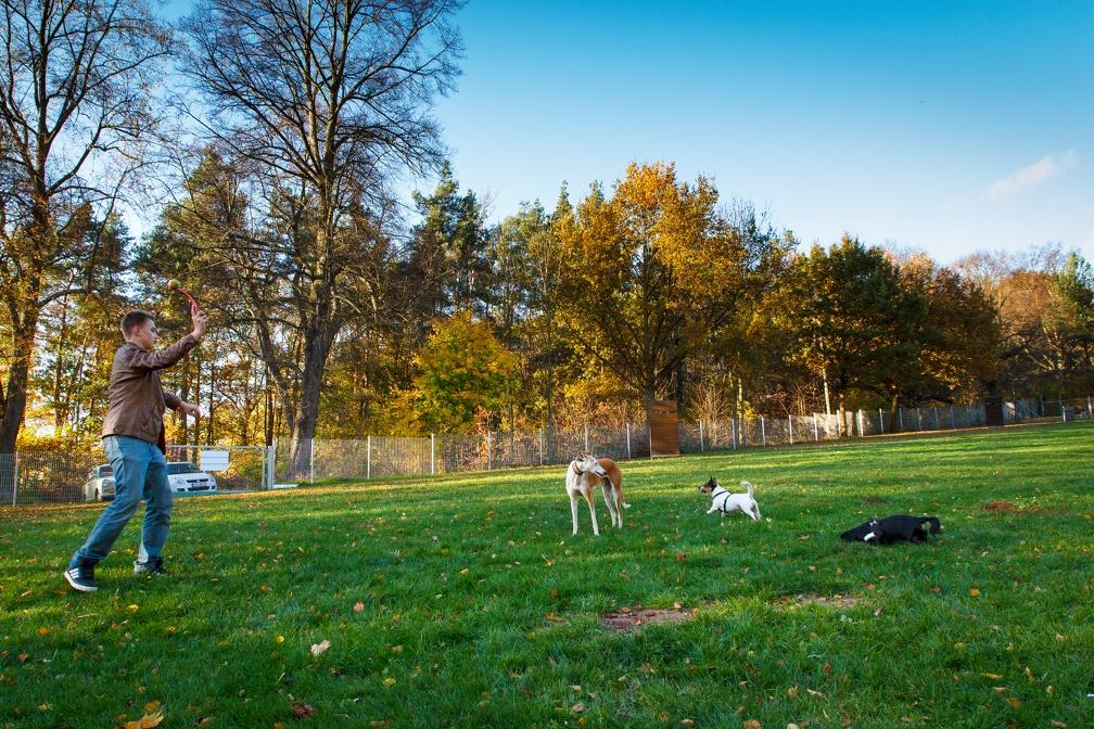 Herbstfest_2013-011