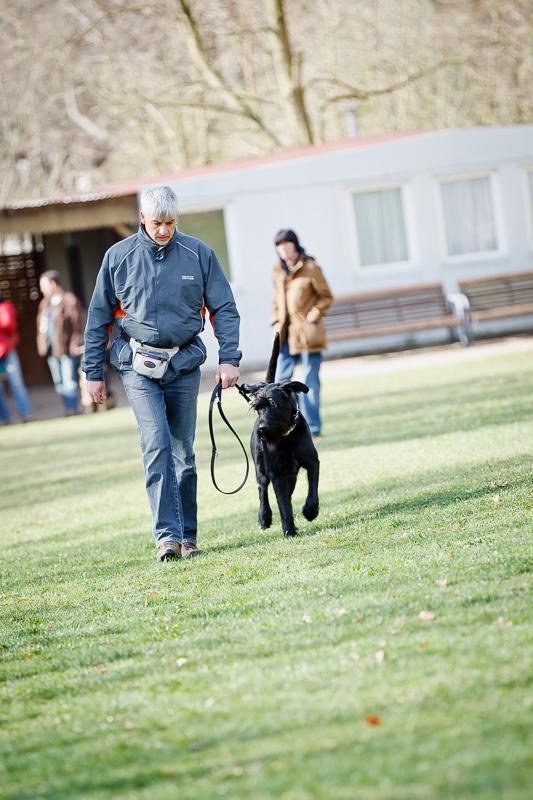 Obedience_Seminar_2012-024