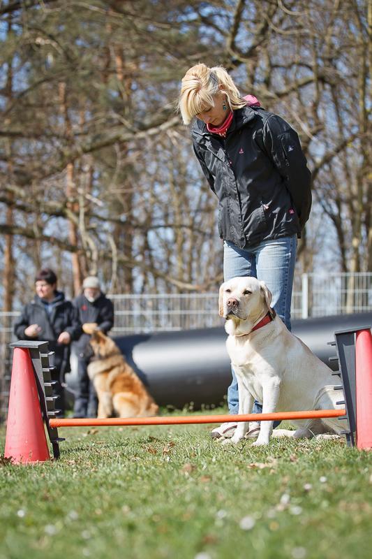 Obedience_Seminar_2012-130