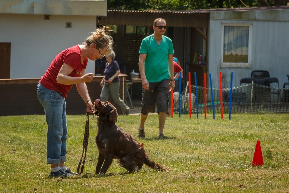 Tag_des_Hundes_2015-038