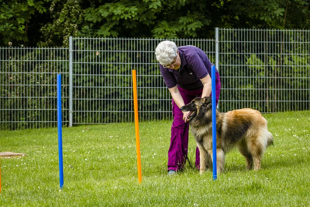 Tag-des-Hundes-2016-30