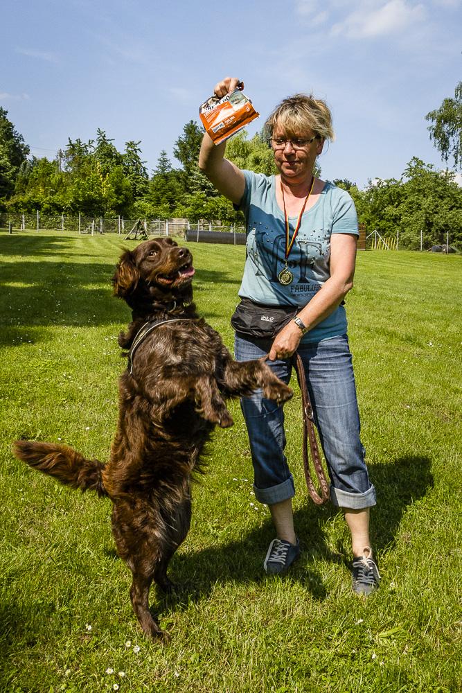 Tag-des-Hundes-2016-58