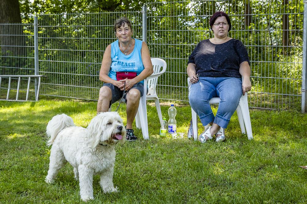 Tag-des-Hundes-2016-64