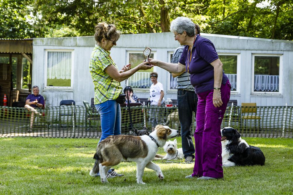 Tag-des-Hundes-2016-73