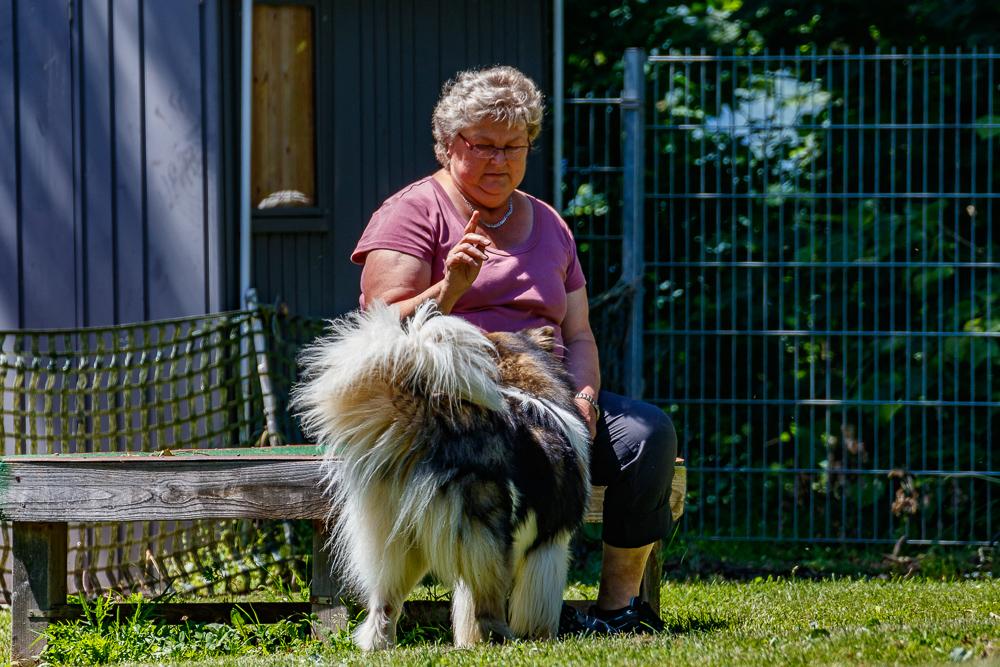 Tag-des-Hundes-2017-045
