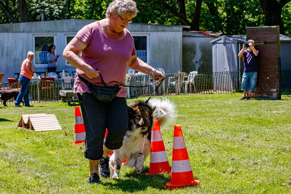 Tag-des-Hundes-2017-055