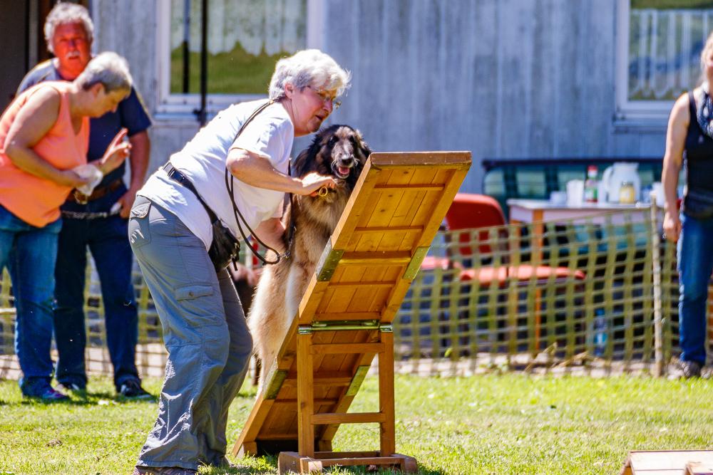 Tag-des-Hundes-2017-072