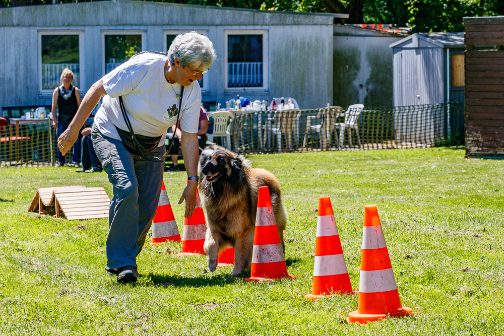 Tag-des-Hundes-2017-074