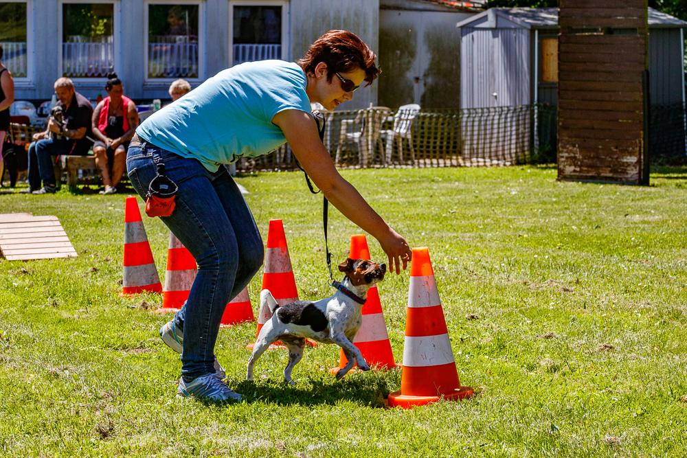 Tag-des-Hundes-2017-079