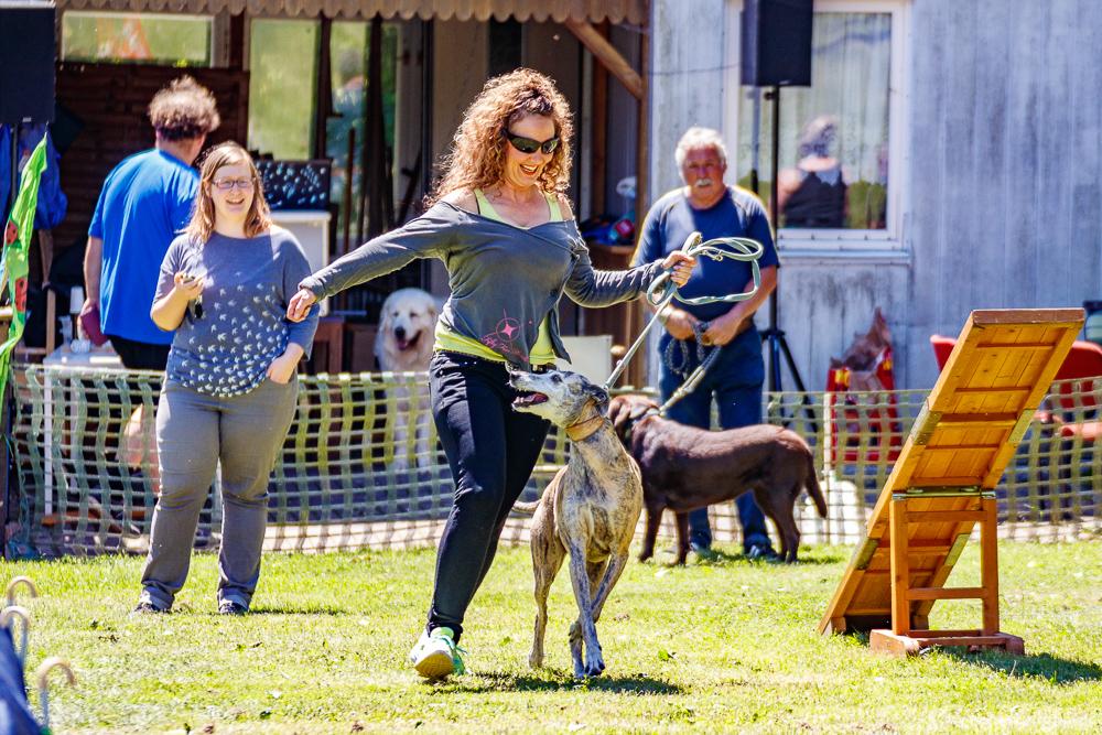 Tag-des-Hundes-2017-082