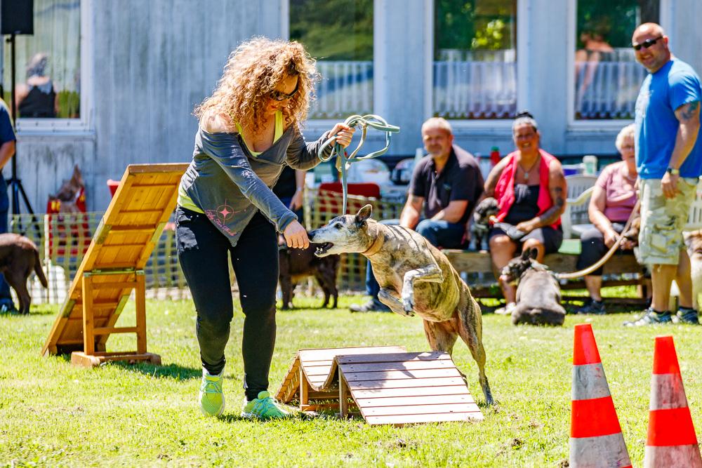 Tag-des-Hundes-2017-083