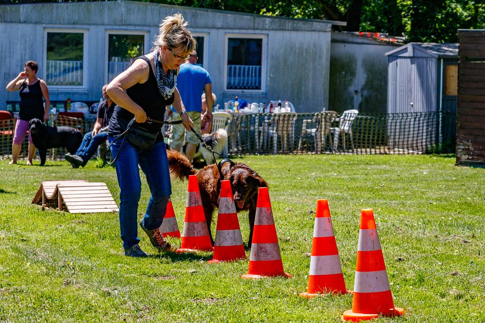 Tag-des-Hundes-2017-092