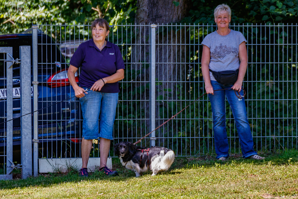 Tag-des-Hundes-2017-140