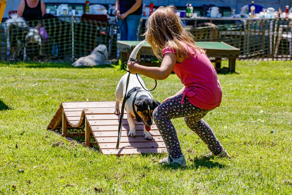 Tag-des-Hundes-2017-164