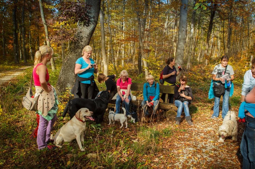Herbstwanderung_2012-001