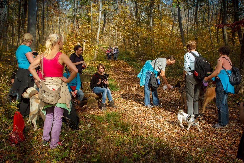 Herbstwanderung_2012-002